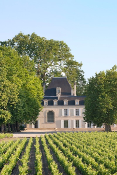 Château Cantemerle (panorama vignoble)