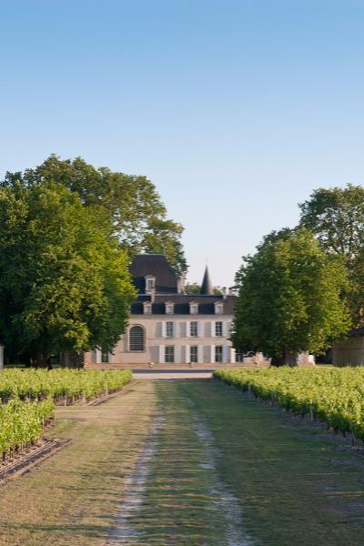 Château Cantemerle (vue 4)
